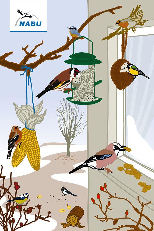 Der Nabu Gibt Tipps Zur Vogelfutterung Vogel Im Garten Vogel Im Winter Wildvogel