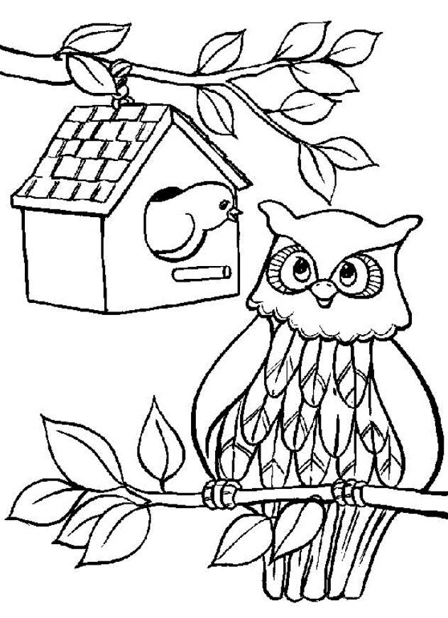 17 best ideas about hibou dessin on pinterest