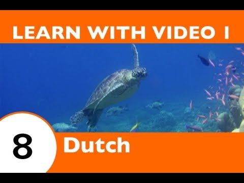 Learn Dutch with Video - If This Dutch Video Lesson Makes You Feel Froggy, Then JUMP! - YouTube