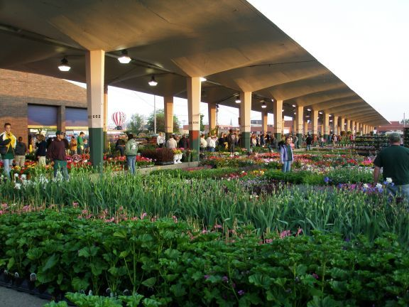 18 best detroit urban farming images on pinterest urban farming apartment gardening and urban for China garden restaurant detroit mi
