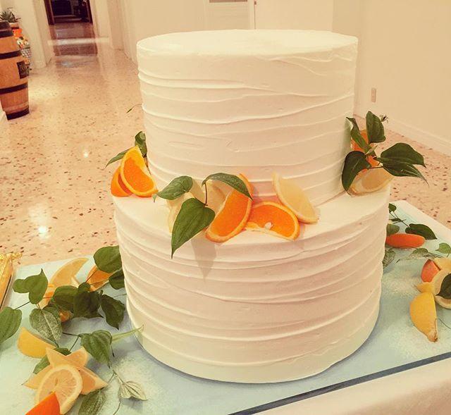 WEBSTA @ chika__wedding - ・・昨日の #ウエディングケーキシンプルなケーキにフルーツが映えますね❤︎お腹いっぱいでも食べれちゃう甘さ控えめなケーキに皆様喜ばれてました〜〜☺︎・・#ウエディングケーキ#ケーキ#フルーツ#オレンジ#レモン#グリーン#スイーツ#ワイン#花嫁#プレ花嫁#卒花#ウエディング#結婚式#コーディネート#カラフル#シンプル#ナチュラル#カフェ#ランチ#ガーデン#一眼レフ#ファインダー越しの私の世界 #写真好きな人と繋がりたい #写真撮ってる人と繋がりたい