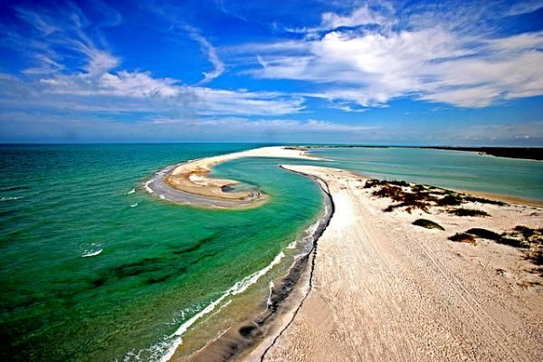 Cayo Costa State Park - not far from Fort Myers where you can fish, kayak, snorkel or camp (only accessible by ferry or private boat)
