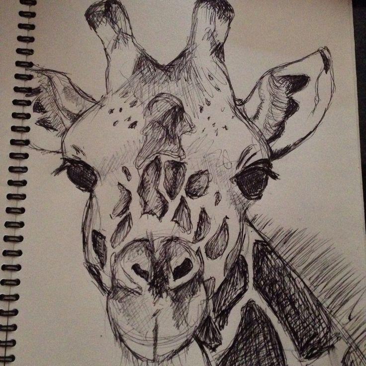 Drawing by Louisa Bartolone