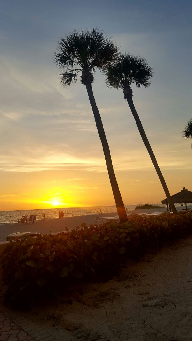Lido Beach Sandcastle Resort in beautiful Sarasota, Fl