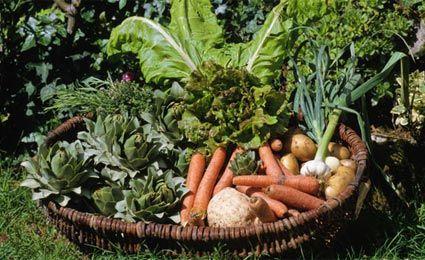 capa de alimentos organicos para facebook - Pesquisa Google