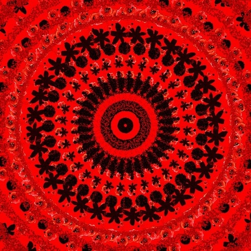 #art #illustration #drawing #draw #TagsForLikes #picture #photography #artist #artsy #instaart #beautiful #instagood #gallery #masterpiece #creative #photooftheday #instaartist #artoftheday #mandala #fractal #red #flowers #nature