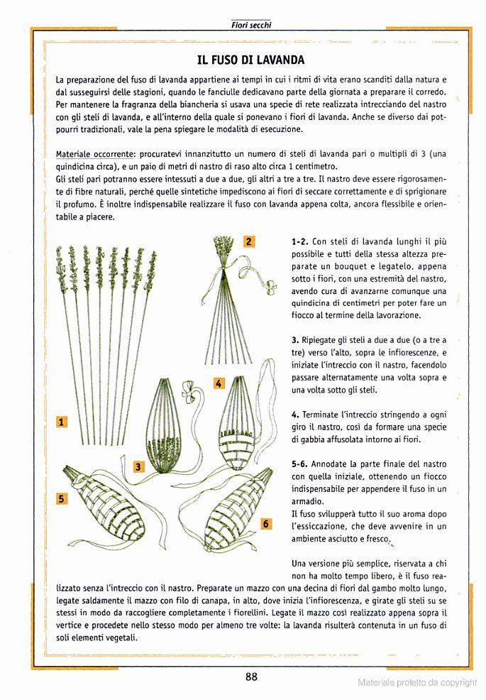 Fiori secchi: composizioni e tecniche di produzione - Google Libri