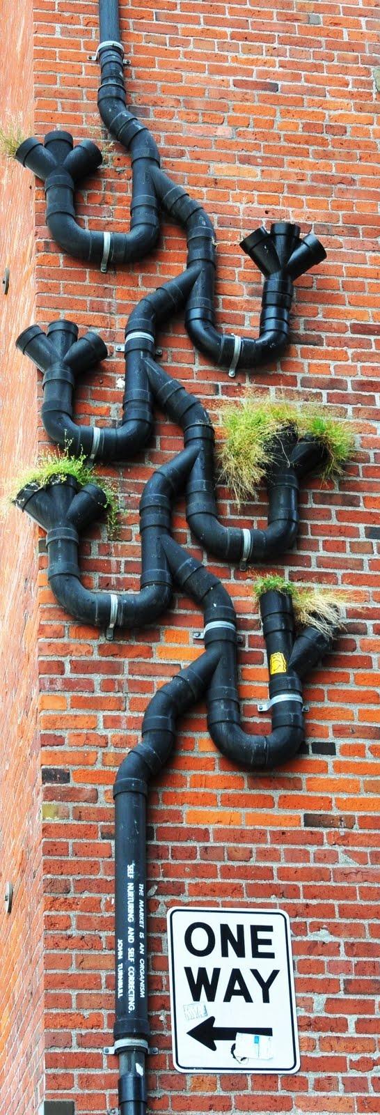 Russ' Photo Journal: Drain Pipe Design in Seattle
