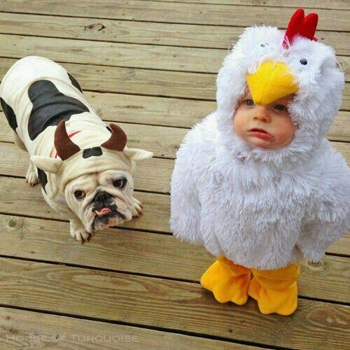 Moma he callin me uh chicken