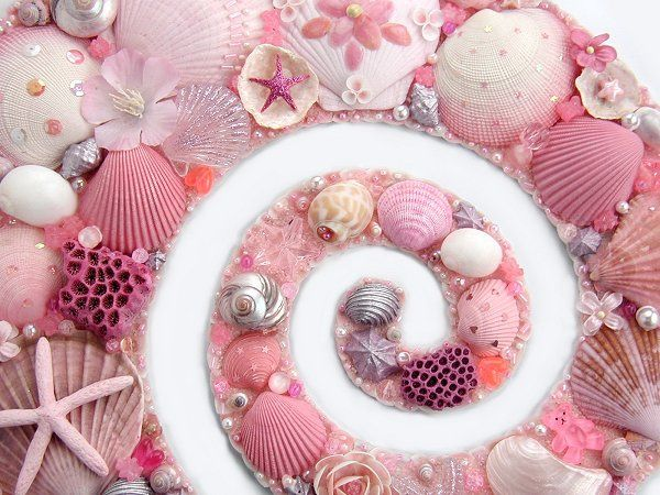 pink shells: Pink Seashells, Seaside Style, Sea Shells, Artworks, Pink Shells, Beachi Things, Photo, Pretty, Sell Seashells
