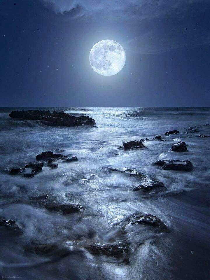 Лунный свет картинки фото