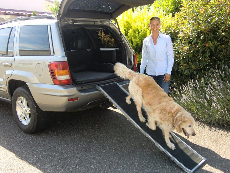 DoggyStep Hunderampe - wahrscheinlich weltweit leichteste - nur ca. 4,9 kg - klappbar - Länge: 162 cm Breite: 39 cm - belastbar bis max 85 kg - Farbe: silber: Amazon.de: Haustier