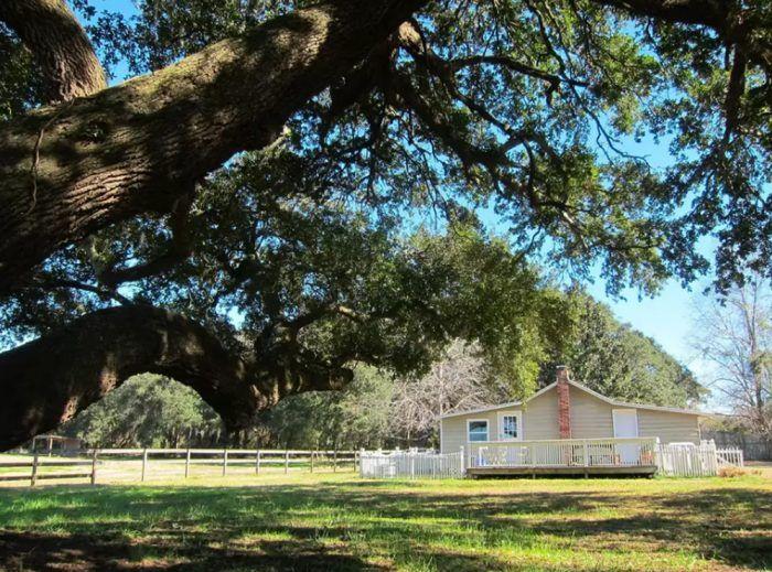 9. The Cottage at Three Oaks Plantation - Johns Island, SC
