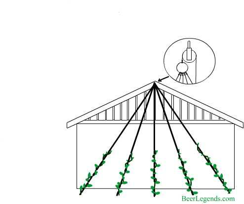 #Hops Trellis House Eve Design. Follow link for more #trellis designs.