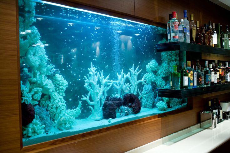 Our Aquarium in Aqua lounge bar restaurant