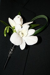 Dendrobium and Fresia boutinniere with lily grass loop
