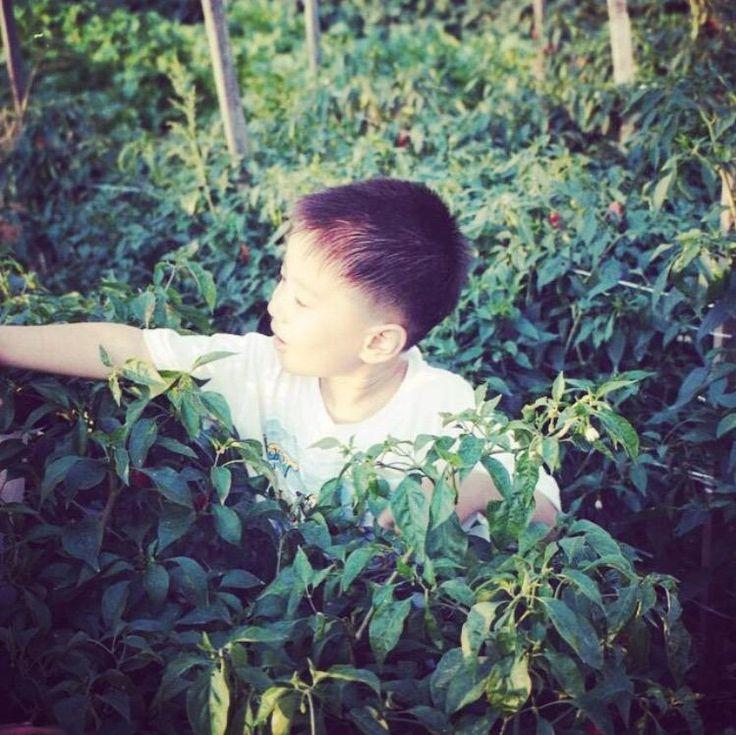 [GyeomStagram] #วันเด็ก