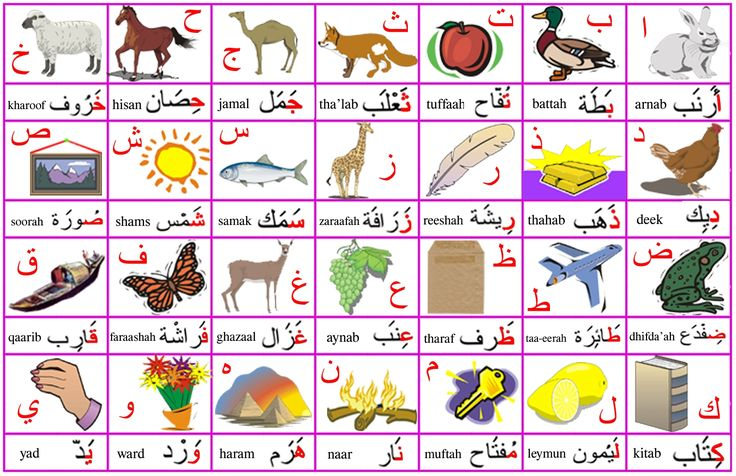 arabic alphabet_picture_chart