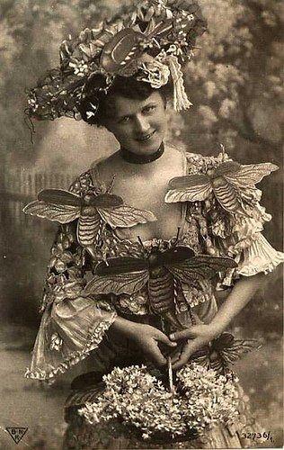 Bumble bee fashions, circa 1900s