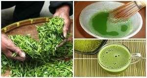 Aquí proporcionamos uno de los remedios naturales más beneficiosos para la quema de grasa del estómago, la prevención del cáncer