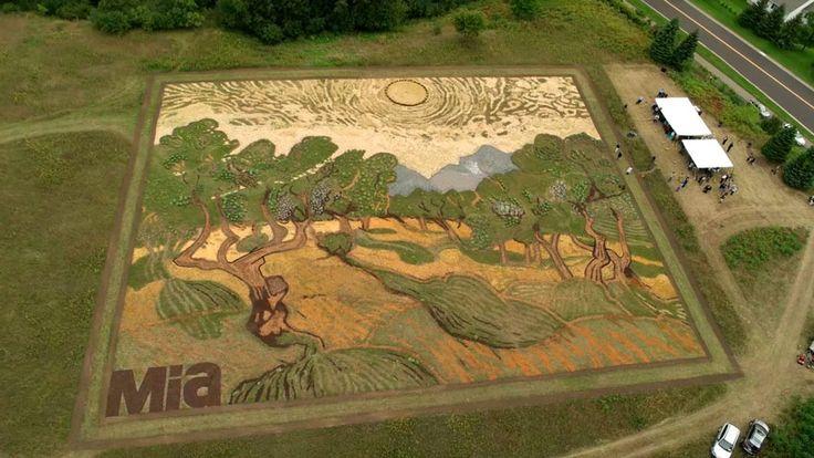 Land art: il reproduit un tableau de Van Gogh sur 5000 m2 - http://www.2tout2rien.fr/land-art-il-reproduit-un-tableau-de-van-gogh-sur-5000-m2/
