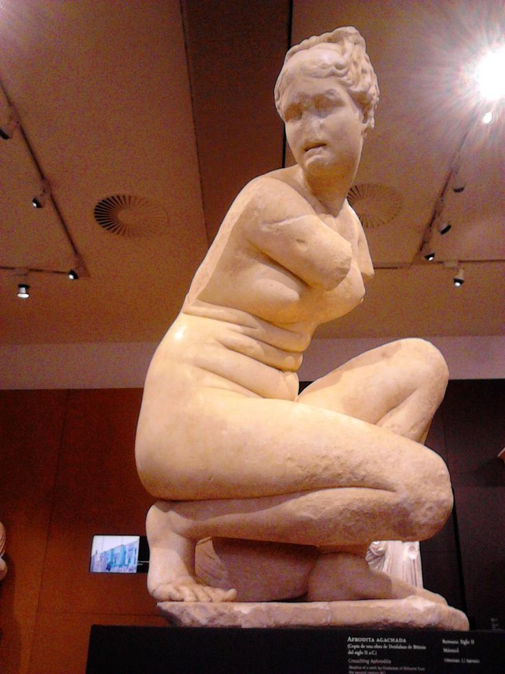 """"""" If Aphrodite had stomach rolls then so can I """" This is veryveryvery important. My wife was feeling down about herself the other night and..."""