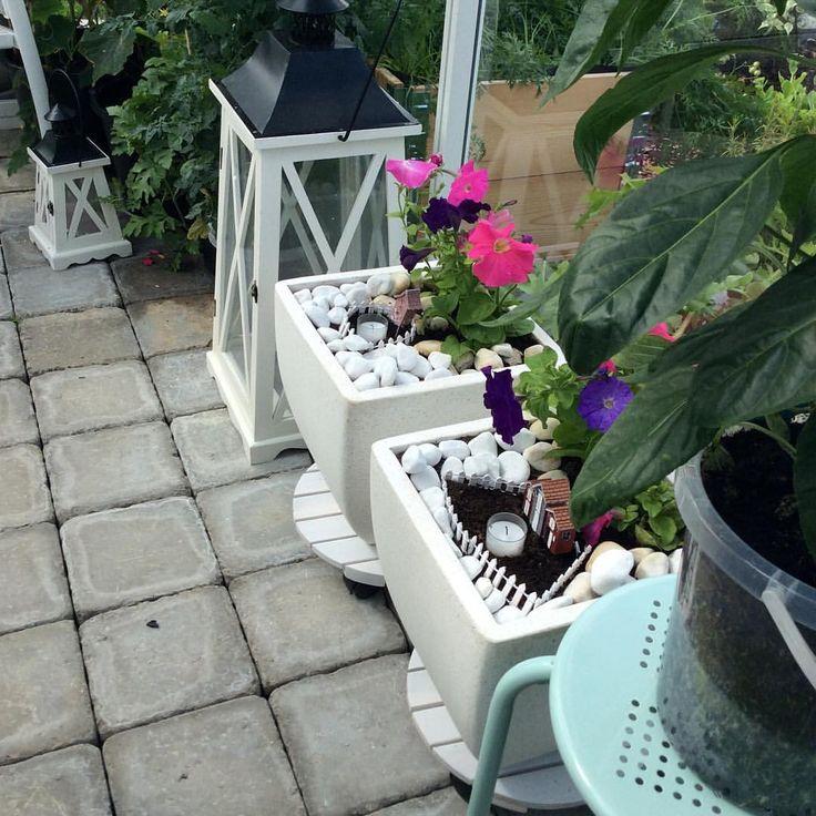 Lite deco måste man ha i växthuset 💚💚