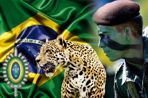 """O Dia do Soldado é um feriado brasileiro instituído em homenagem a Luís Alves de Lima e Silva, patrono do Exército brasileiro, nascido em 25 de agosto de 1803, que se tornou conhecido como """"o pacificador"""" após sufocar muitas rebeliões contra o Império."""