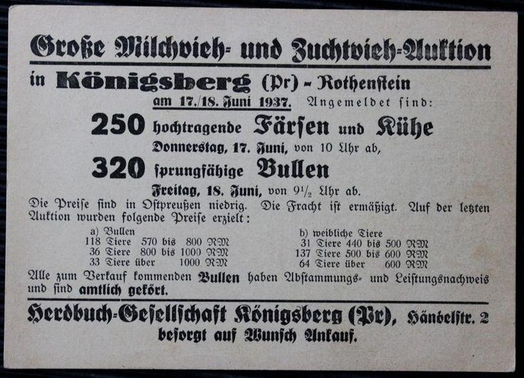 Königsberg Rothenstein - Milchvieh Zuchtvieh Auktion 1937 - Selten