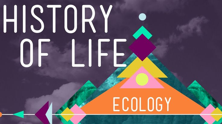 The History of Life on Earth - Ecology #1