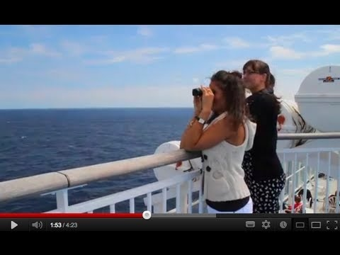 Whale- and Dolphin-Watching on the ferry to Northern Spain