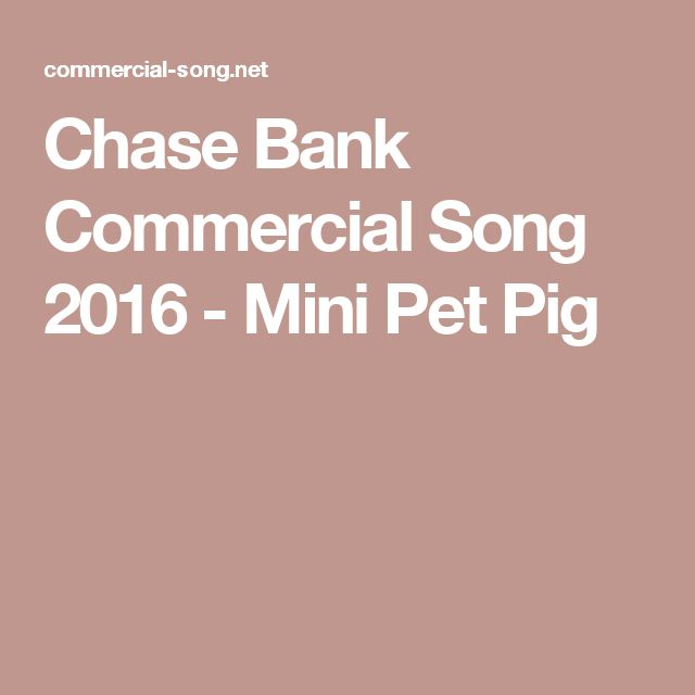 Chase Bank Commercial Song 2016 - Mini Pet Pig
