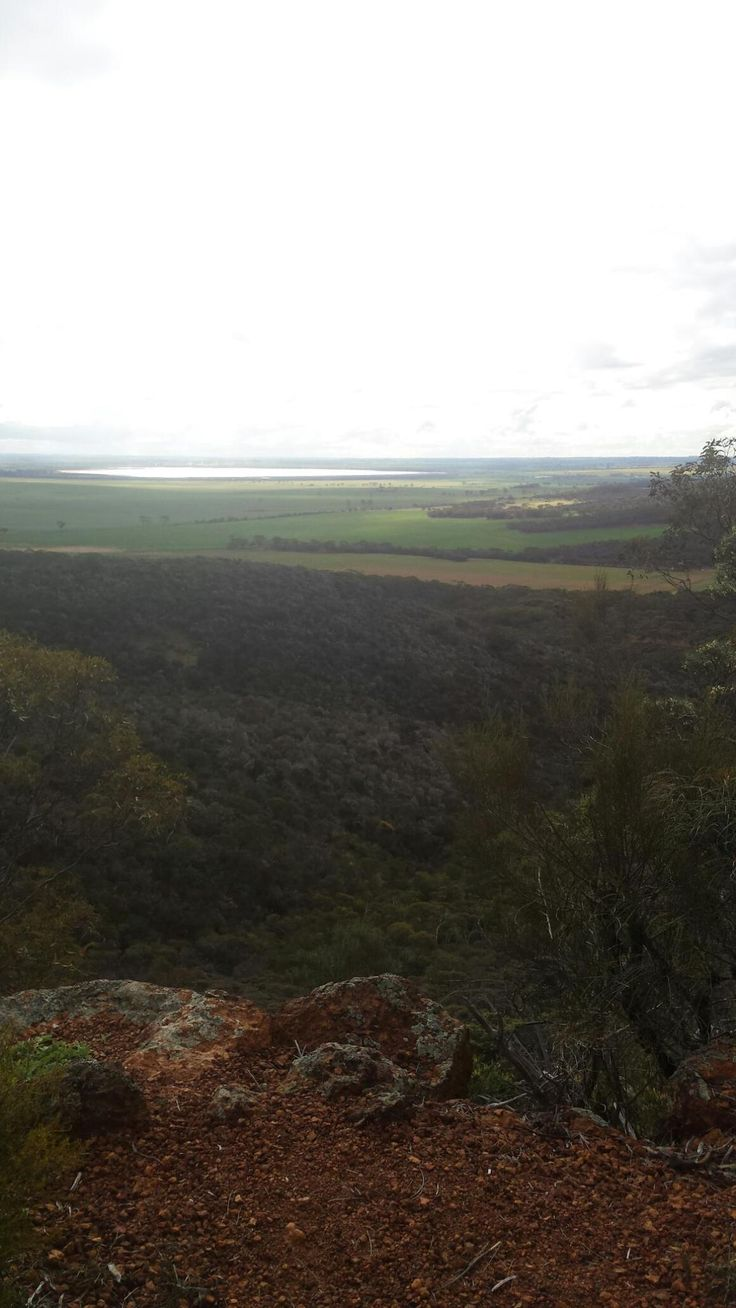 O'Briens Lookout looking out to Lake Hinds