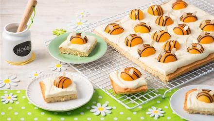 Bienchenkuchen | Summ, summ, summ ... Bienchen summ herum. Auf unserem Bienchenkuchen sind süße Aprikosen-Bienchen gelandet. Entdecke ein allerliebstes Backrezept.