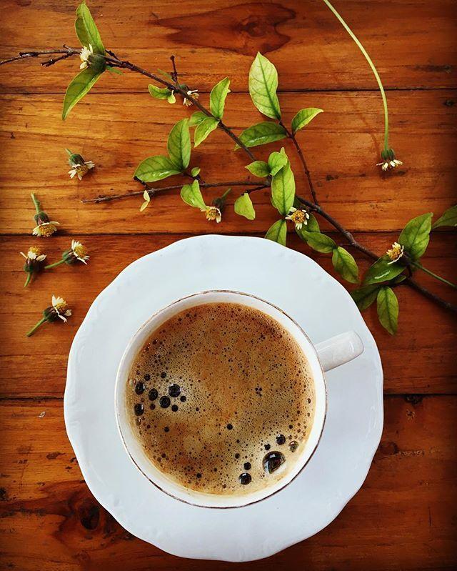 ดอกหญ้าคู่กาแฟดำ
