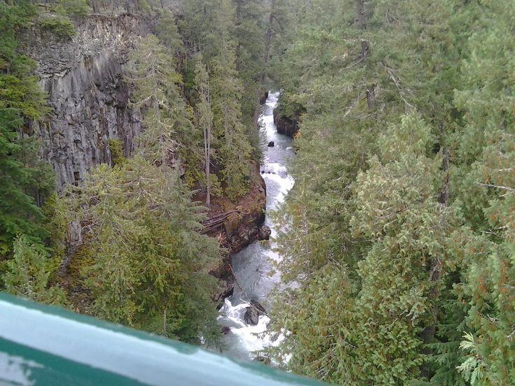 Whistler Bungee was AWESOME!! ...