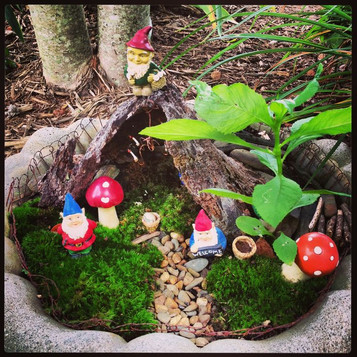 Gnome In Garden: 17 Best Images About Fairy/Gnome Mini Gardens On Pinterest