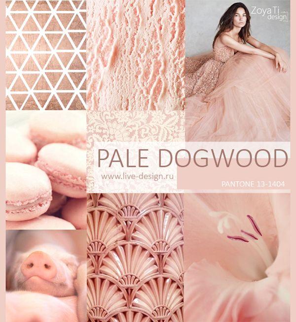 Модный цвет  PANTONE 2017 - 13-1404 Pale Dogwood / Бледный Кизил, сезон лето-весна 2017