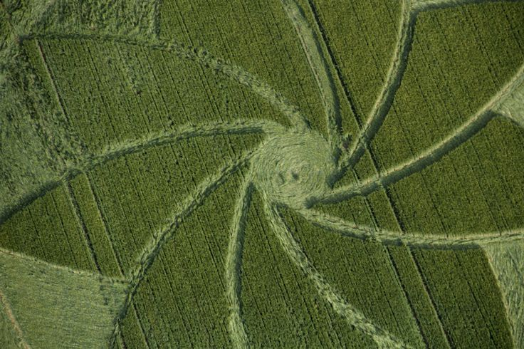 Crop Circle at Hoden, nr Evesham, Worcestershire. United Kingdom. Reported 13th July 2013