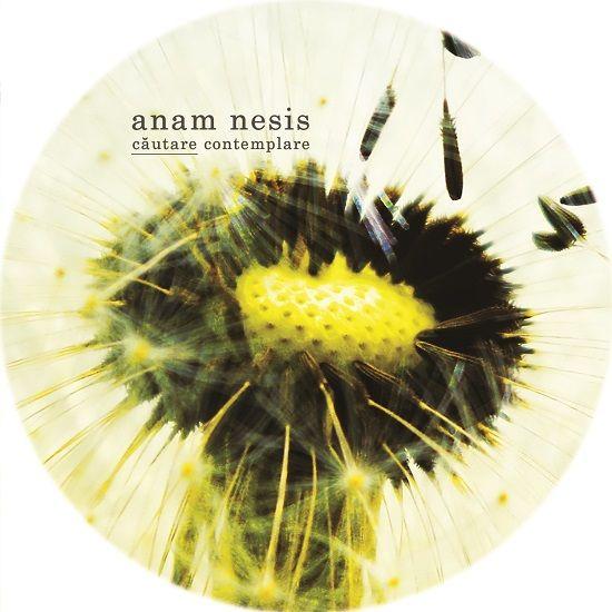 Golden Ticket W38 - Anam Nesis: Căutare / Contemplare vinyls [Ada Kaleh Romania]
