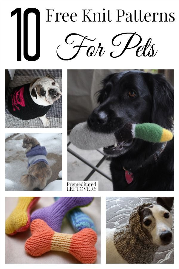 The Pet Loving Knitters Dream - 10 Free Knit Patterns for Pets including knit cat toy patterns, free knit cat hoodie pattern, free knit dog toy patterns and free knit dog sweater pattern.