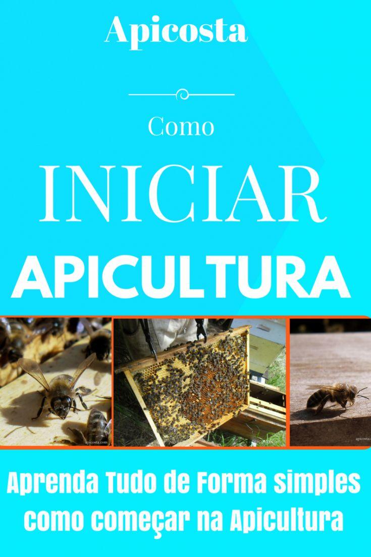 Como Iniciar a apicultura Manual gratuito