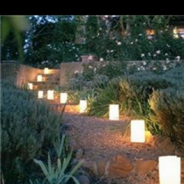 Luminaries to make your gardens twinkle lights on trees luminarias along paths