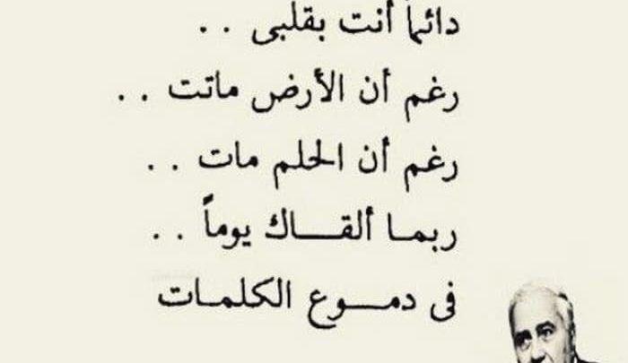 اشعار فاروق جويدة عن الشوق والغرام من أجمل ما كتب Math