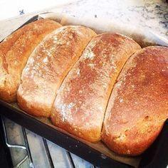 Sett brøddeigen nå, så blir det nystekt til frokost i morgen. Oppskriften finner du på bloggen, halvgrove brød med sirup. #fruhaaland #yesmat #brodogkorn #bakemag