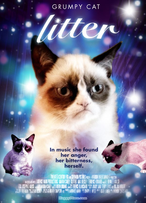 Forget Glitter the movie - Grumpy Cat stars in Litter