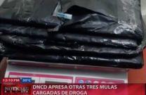 DNCD Apresa Otras Tres Mulas Cargadas De Drogas #Video