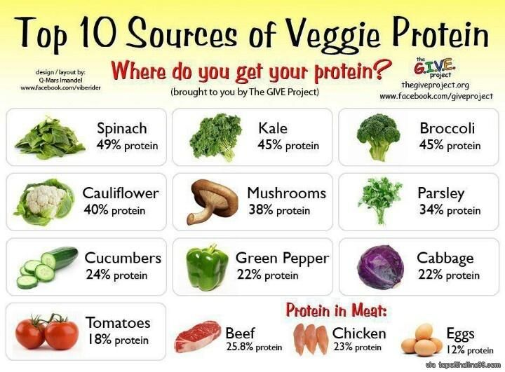 29 best nutrition facts images on pinterest healthy foods healthy top 10 sources of veggie protein you do not need meat to get your protein plant sources have plenty protein vitamins and minerals forumfinder Gallery