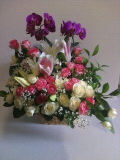 Toko Bunga Bogor - 082225850801: Toko Karangan Bunga Bogor (Florist Bogor)
