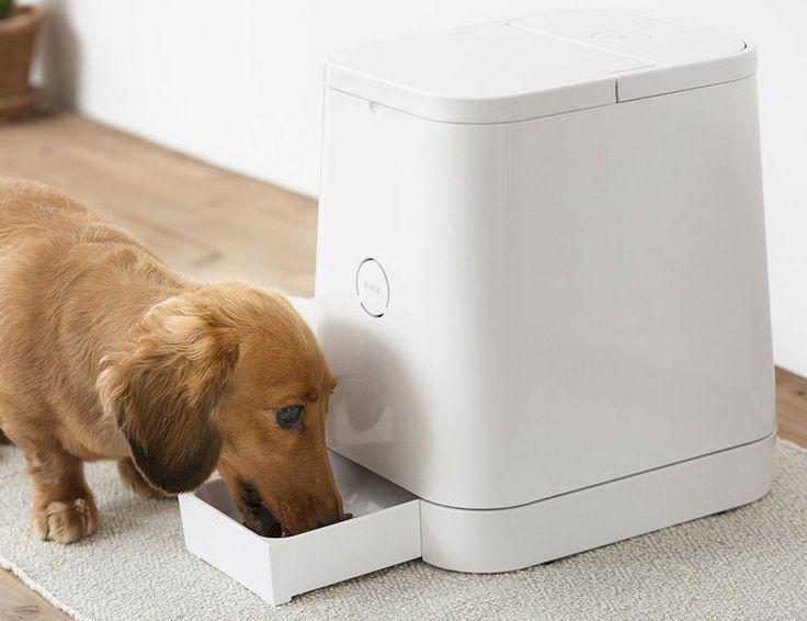 Au lieu d'avoir un énième accessoire pour animaux domestiques moche comme tout, le distributeur automatique de croquettes Petly a été créé par une société japonaise soucieuse du design et de la santé de nos animaux.
